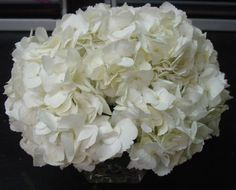 This is a cube vase floral arrangement that features white hydrangea.  See our entire selection at www.starflor.com.  To purchase any of our floral selections, as gifts or décor, please call us at 800.520.8999 or visit our e-commerce portal at www.Starbrightnyc.com. This composition of flowers is generally available for same day delivery in New York City (NYC).  SQ165