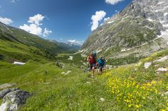 Prepare yourself for pure alpine bliss wandering through fields of wildflowers surrounded by stony peaks.