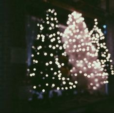 Imagen de christmas, lights, and christmas tree