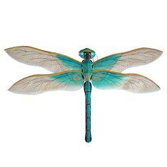 blue dragon flys - Google Search
