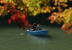 Autumnal Equinox:  When Does Fall Officially Begin?