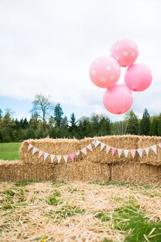 Pink & Brown Pony Birthday Party Decor