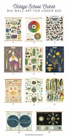 Vintage-style school charts are an easy, affordable way to decorate your walls. Here's a roundup of the best vintage-style posters with hanging kits.Quickly fill a bleak wall with a funny vintage school card. These are great … – Farmhouse Office Decor Vintage Stil, Vintage Home Decor, Vintage Playroom, Vintage School Decor, Funny Vintage, Vintage Ideas, Vintage Maps, Vintage Colors, Vintage Humor