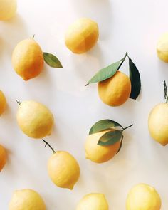 "theglitterguide: "" When life gives you lemons… Feeling totally inspired by everything lemon right now. Thanks, California (from our own tree). Also, check out our snapchat (glitterguide) to see some..."
