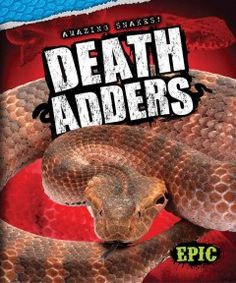 DEATH ADDERS   by Davey Sweazy : What are death adders? -- Where death adders live -- Avoiding predators -- Luring prey.
