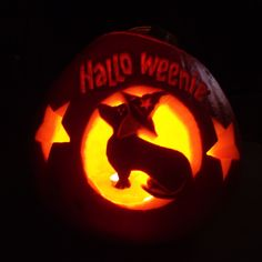 Happy Hallo-weenie dachshund pumpkin carving - grown in our allotment by Colin and carved by me :) halloween