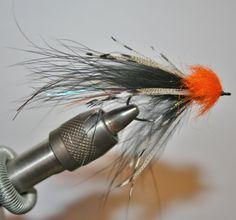 Hubbard's Low-Water Leech