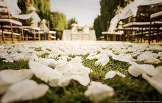 Ideas originales para decorar casamientos