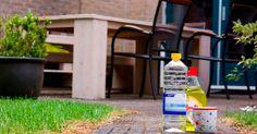 Dit heb je nodig: 3,5 liter schoonmaakazijn 1/2 kopje zout flinke scheut afwasmiddel spuitbus (adsbygoogle = window....