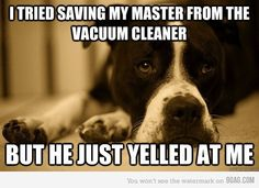 dog problems.. though i think turk just wants me to be eaten by the vacuum.