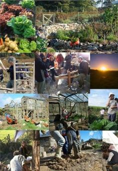 Permaculture Design Course (PDC) | Carraig Dulra South East Ireland