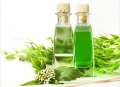 Today we're talking about an Gurunanda Tea Tree Essential Oil that you've probably heard of or have seen in recipes for homemade cleaners: tea tree oil.