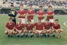 SCRIVOQUANDOVOGLIO: FERSULCIS 1987-1988