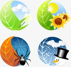 Four Seasons Icon Vector Graphic Seasons Of The Year, Four Seasons, Weather For Kids, Seasons Activities, Classroom Projects, Classroom Rules, Vector Design, Vector Free, Clip Art