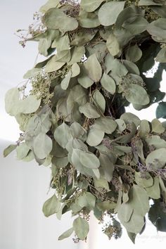 FRENCH COUNTRY COTTAGE: Eucalyptus wreath~ diy