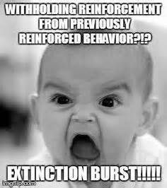 "Extinction Procedures - ""Extinction as a procedure occurs when reinforcement of a previously reinforced behavior is discontinued; as a result, the frequency of that behavior decreases in the future."" The ""principle of extinction"" proposes that because behaviors occur for a reason - they get us things we want - if we stop getting what we want after we engage in a certain behavior then that behavior will eventually stop occurring because it no longer serves any purpose for us."