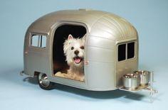 4 Very Special Dog Beds For Happy Dog Dreams - http://www.dogisto.com/4-very-special-dog-beds-for-happy-dog-dreams/
