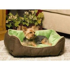 Your dog will thank you for this plush, self-warming sleeper from K&H Pet Products. A layer of metalized insulations retains and radiates heat for surprising warmth generated by your pet's very own body heat