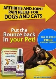Arthritis and Joint Pain Relief For Dogs and Cats by Sue Woodson. $3.07. moveonyourmind.co.... 8 pages. Arthritis and Joint Pain Relief For Dogs and Cats gives you in depth detail about your aging pets joint problems. Look inside to get a coupon for a free sample of Pet Bounce and have your pets feeling young again!                            Show more                               Show less