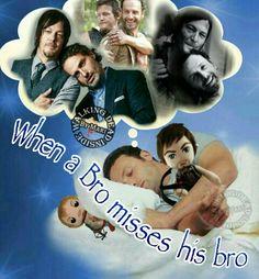 The Walking Dead, Memes, Rick Grimes, Andrew Lincoln, Daryl Dixon, Norman Reedus, Bro-mance