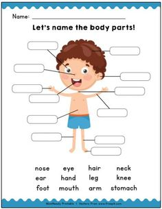 Identify the Body Parts Learning Worksheets English Activities For Kids, Learning English For Kids, English Worksheets For Kids, English Lessons For Kids, Kids English, Preschool Learning Activities, Kindergarten Worksheets, Teaching Kids, Kids Learning