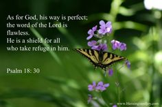 psalm 18 30 - Google Search