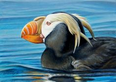 Tufted Puffin 5x7, painting by artist George Lockwood