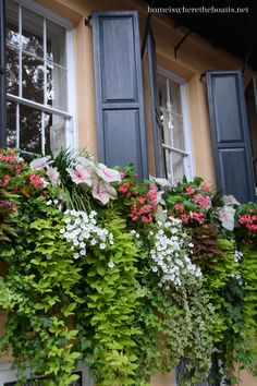 Lush, cascading window box plantings in Charleston, SC.