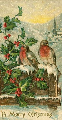 CHRISTMAS BIRDS 03 12 15 01