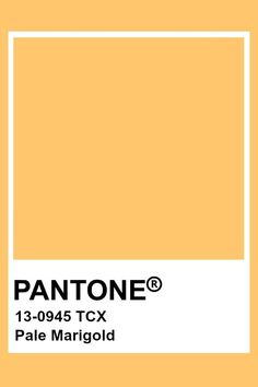 This dandelion yellow has a dark value and a slight chroma. This yellow hue sits slightly to the orange side of the spectrum. Pantone Gold, Pantone Paint, Paleta Pantone, Pantone Tcx, Yellow Pantone, Pantone Swatches, Paint Swatches, Color Swatches, Pallette