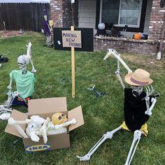 Halloween Skeleton Decorations, Halloween Skeletons, Scary Halloween, Halloween Crafts, Halloween Yard Displays, Spooky Scary, Spirit Halloween, Halloween Nails, Halloween Pumpkins