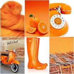 Mood Board Monday - Orange Blossom by Tanis Fiber Arts Tanis Fiber Arts, Photoshop Projects, Beautiful Color Combinations, Aesthetic Colors, Colour Board, Orange Blossom, Art Blog, Diy Crafts, Instagram Posts