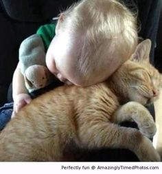 Baby's best friend – Nap time just got cuddly cute.