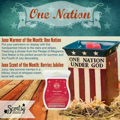 Scentsy ~ June 2014 Special ~ One Nation Warmer & Berries Jubilee Scent      Order June 1st at https://tracytodaro.scentsy.us or email me at todaro@fidnet.com to place your order!!!