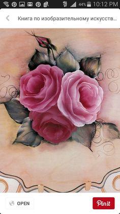 close up Priscilla ' s Book of Beautiful Roses