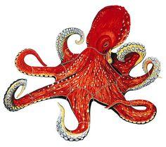 Octopus Art | Flying Fish/Octopus - Ceramic Mosaic Art