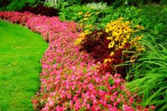 33 Beautiful Flower Beds Adding Bright Centerpieces to Yard Landscaping and Garden Design – Lushome Home Landscaping, Landscaping Company, Landscaping With Rocks, Front Yard Landscaping, Diy Garden, Summer Garden, Dream Garden, Garden Grass, Garden Web