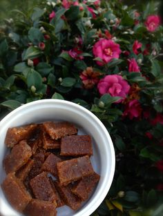 Two Ingredient Fudge in the Thermomix