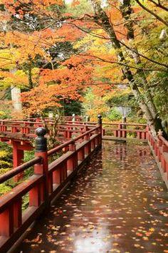 雨の小松・那谷寺、紅葉は美し - 金沢の片隅から