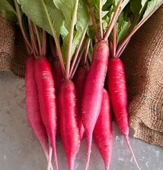 Shunkyo Semi-Long - A distinctive specialty radish from North China. long, rather smooth, cylindrical, deep pink roots with crisp, white flesh. The taste is both hot and unusually sweet. Edible Flowers, All Flowers, French Breakfast Radish, Red Carrot, Seed Packaging, Garden Seeds, Garden Plants, Edible Garden, Fruits And Vegetables