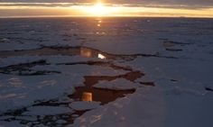 Antarctica Live: sunrise over ice floes... (Laurence Topham)
