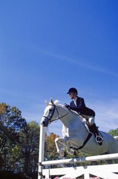 Exercises to Become a Better Horseback Rider