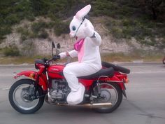 Easter Bunny Rides
