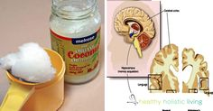 In related news, Florida researchers are also looking into whether coconut oil might be of benefit against Alzheimer's. Three years ago, I published Dr. Mary Newport's theory that ketone bodies, an alternative fuel for your brain that your body makes when digesting coconut oil, might offer profound benefits in the...More