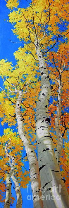 Tall Aspen Trees by Gary Kim - Malerei & Kunst Autumn Nature, Autumn Trees, Nature Tree, Nature Nature, Landscape Art, Landscape Paintings, Paintings Of Trees, Landscapes, Aspen Trees