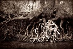 Wonderland : Dryad | Flickr - Photo Sharing!