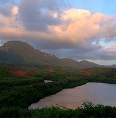 Alekoko Fishpond Hawaii Flights, Southwest Airlines, International Flights, Waikiki Beach, Pearl Harbor, Hawaiian Islands, Hawaii Travel, Oahu, Places To Go