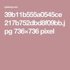 39b11b555a0545ce217b752dbd8f09bb.jpg 736×736 pixel