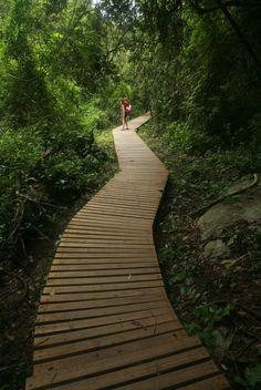 Parque Tayrona, Colombia. Photo by Luke Keegan.