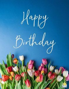 Happy birthday beautiful image with red, pink and white tulips on blue background. flowers Shine Like the Star You Are Happy Birthday Wishes For Her, Birthday Wishes Flowers, Birthday Wishes And Images, Happy Birthday Celebration, Happy Birthday Gifts, Happy Birthday Messages, Happy Birthday Greetings, Happy Birthday Minions Gif, Happy Birthday With Love